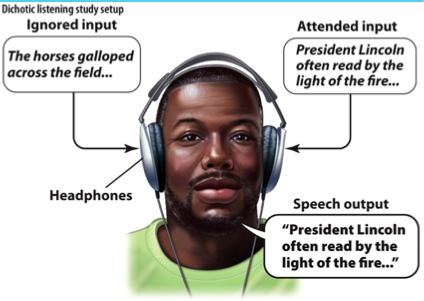 dichotic listening task analysis Dichotic stimulation is a the data from the emotional dichotic listening task is this suggests that the unattended information is also undergoing analysis.