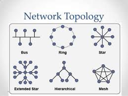 Network topology flashcards by proprofs network topology is the pattern in which nodes ie computers printers routers or other devices are connected to a local area network lan or other publicscrutiny Choice Image