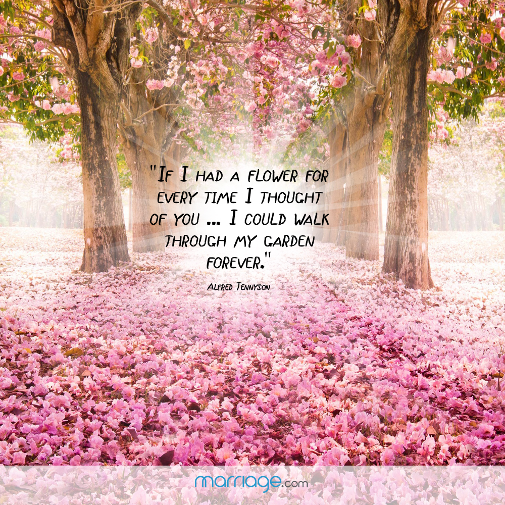 If i had a flower for every time i thought of you i - When you walk through the garden ...