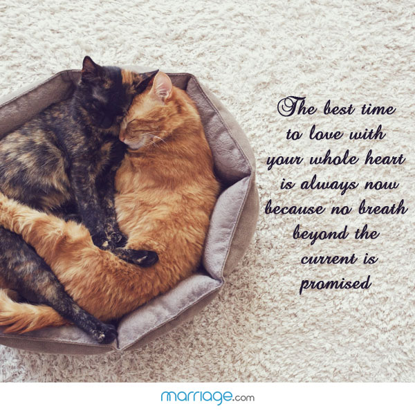 The Best Time To Love With Your Whole Heart...