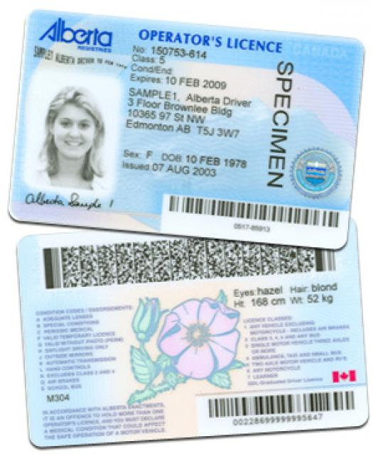 how to tell a fake nsw drivers licence