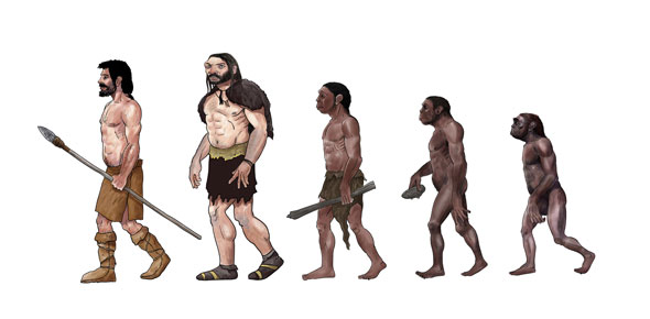 Evolution Quiz