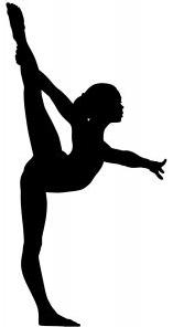 Image result for gymnastics