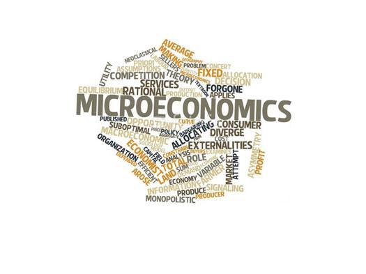 Microeconomics [ch. 13]
