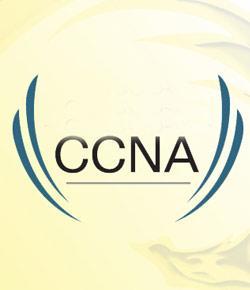CCNA 1 final exam
