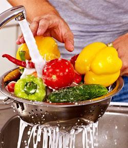 basic food safety level    proprofs quizbasic food safety level