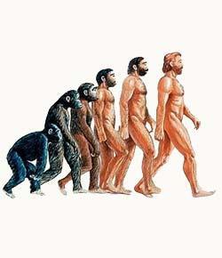 Anthropology 1102-012 Quiz 7