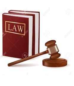 Criminal Procedure Quiz 2