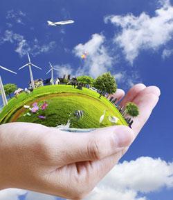environmental science quiz (hs - AP)
