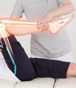 Pectoral Girdle And Upper Limb Quiz
