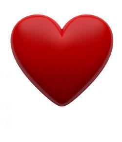 Heart Model & Sheep Heart Practice Quiz