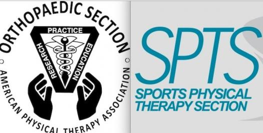 Sport Certified Specialist - SCS Practice Test / Orthopedic Board ...