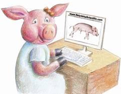 Fetal pig duodenum