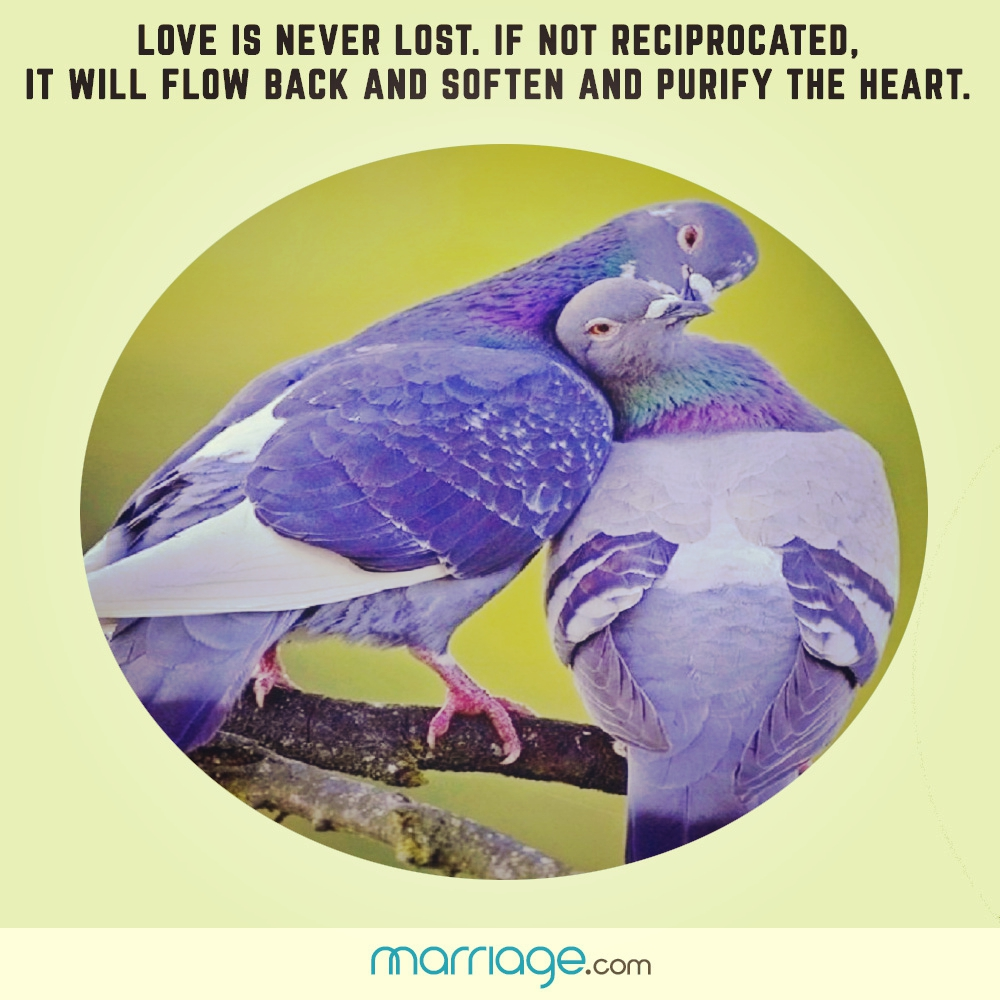 Love is never lost. if not reciprocated, it will flow back and soften and purify the heart.