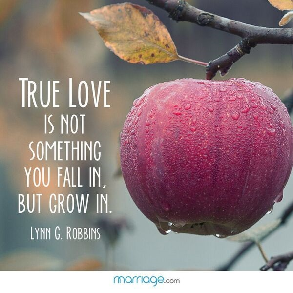 True Love Is Not Something You Fall In, But...