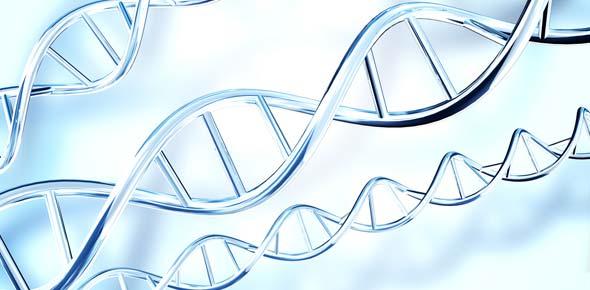 exam 2 cellular and molecular biology proprofs quiz