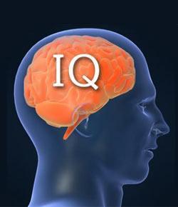 Free easy iq test | Free IQ Test Online - Instant IQ WAIS Score