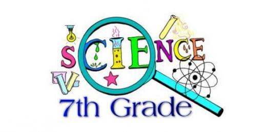 The Ultimate 7th Grade Science Quiz! - ProProfs Quiz