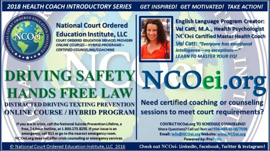 NCOei org $10 For 2Hrs ADULT DRIVING SAFETY HANDS FREE LAW AWARENESS