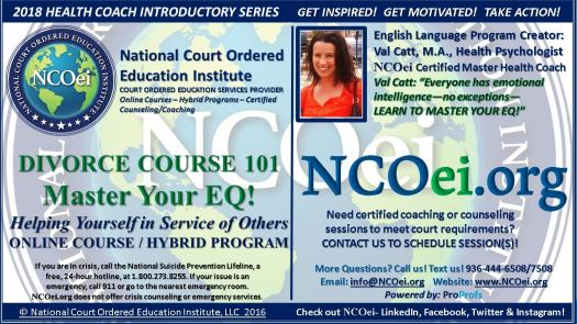 Ncoei 15 for 4hr adult divorce course master your eq by val national court ordered education institute ncoei divorce course 101 the basics master your eq by val catt health psychologist at ncoei valued solutioingenieria Image collections