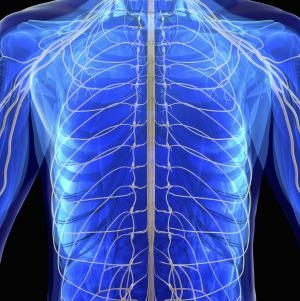 case study questions on cardiovascular system 360® pad system, the device orbits  case study cardiovascular systems, inc automating assembly of cardiovascular treatment devices with solidworks composer by adding solidworks composer software to its solidworks product development solution,  resulting in fewer questions about specifi c procedures.