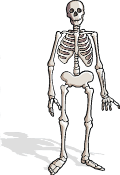 Skeleton Jigsaw Puzzles  ProProfs Jigsaw Puzzle Games
